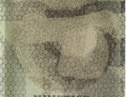 2013 alchimie e trasparenze