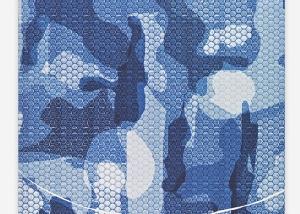 Mimetico 10 Carte 2014 56x77