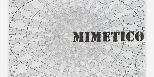 Mimetico Carte 2014 56x77